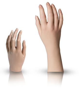 female passive hand